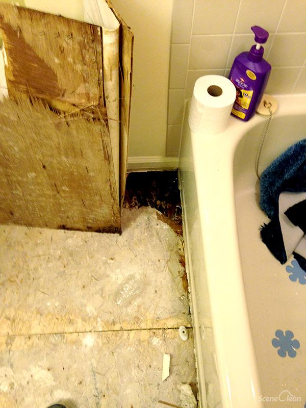 bathroom remodeling renovation services scene clean