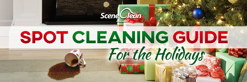 Scene Clean Spot Cleaning Guide for the Holidays
