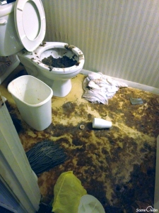 sewer-damage-photo-04